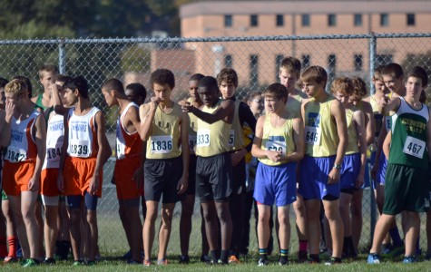 Cross Country Runners Stride into State